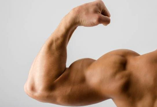 arm-strength-muscle